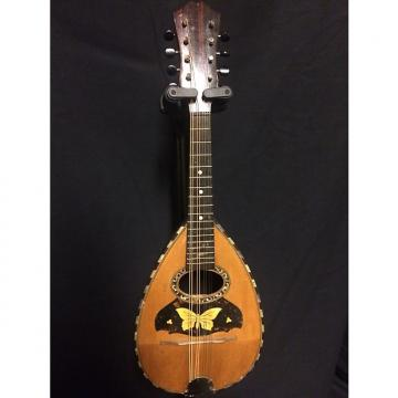 Custom vintage unknown bowl back mandolin