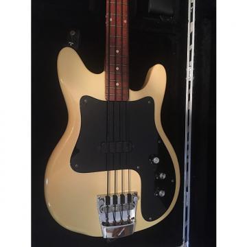 Custom Rickenbacker 3001 1978