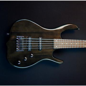 Custom KSD  Burner Ignition Five String Transparent Black