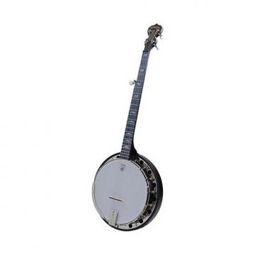 Custom NEW Deering Artisan Goodtime Special Resonator Banjo - Free Gig Bag!