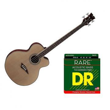 Custom Dean Guitars EAB Acoustic Bass Cutaway w/Strings