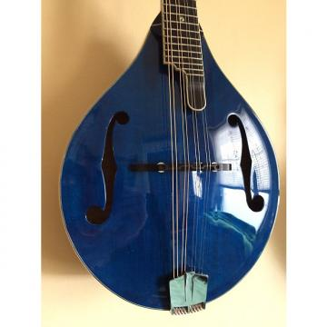 Custom Eastman Mandolin MD805 PGE-BLU