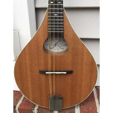 Custom Weber Aspen # 2 Prototype Mandolin