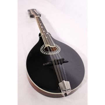 Custom Eastman MD404-BK A-Style Mandolin