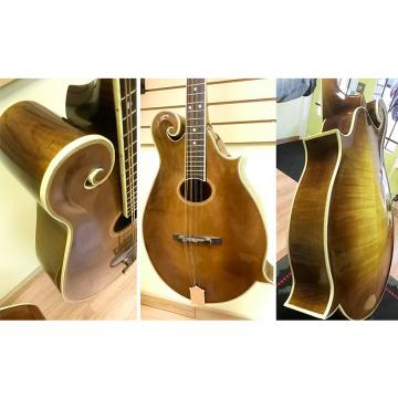 Custom 1993 Handcrafted MandoCello by Stephenson, Arched top and back