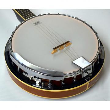 Custom Davison 5 String Banjo