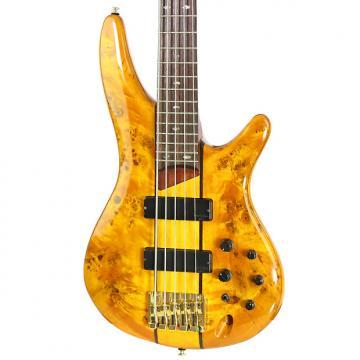 Custom Brand New Ibanez SR805 Amber Electric Bass