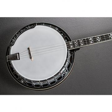 Custom Gold Tone L-250 Tenor Banjo Recent
