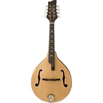Custom Jay Turser JTMN-30s Solid Spruce Top Mandolin
