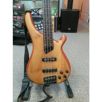 Custom Tune Bass Maniac Fretless