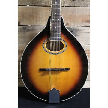 Custom Gold Tone GM-50 A-Style Mandolin