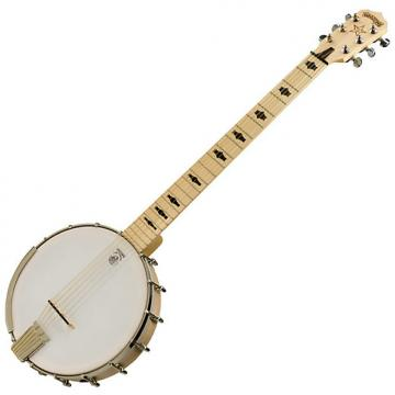 Custom Deering Goodtime Six 6 String Banjo