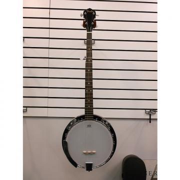 Custom Fender Concert Tone Banjo Pack