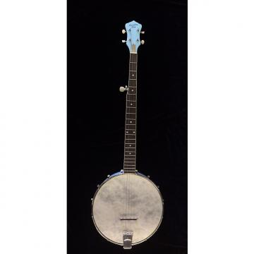 Custom Brand New Recording King Blue Starlight Open Back Banjo