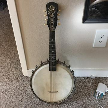 Custom Unknown Banjo Mandolin