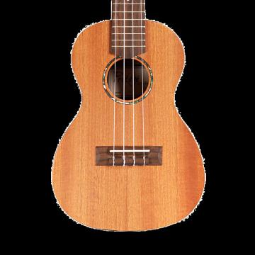 Custom Cordoba Protege U1 Concert Ukulele