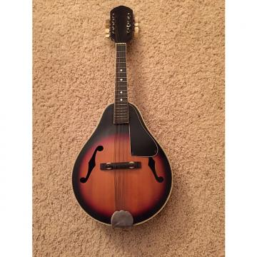 Custom Vintage 8 String A Style Mandolin