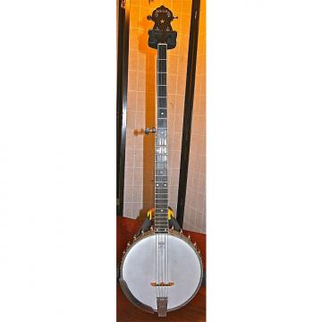 Custom Vega Pete Seeger 1968 All Original - Iconic Banjo, Pro Set Up