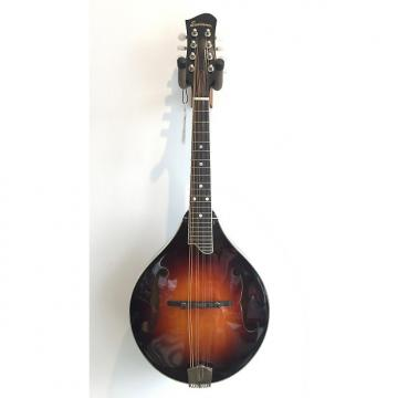 Custom Eastman MD505 Classic A Style Mandolin SALE