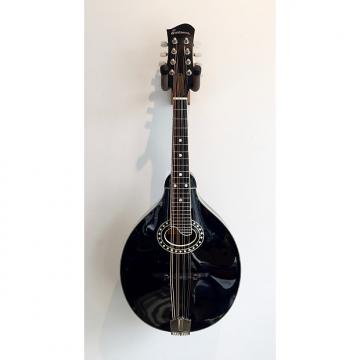 Custom Eastman MD404 A Style Mandolin SALE