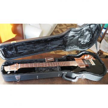 Custom Ampeg Dan Armstrong Bass Smoked