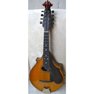 Custom Lyon and Healy Style A Professional Mandolin  Shorter of the two scales they made SALE PENDING