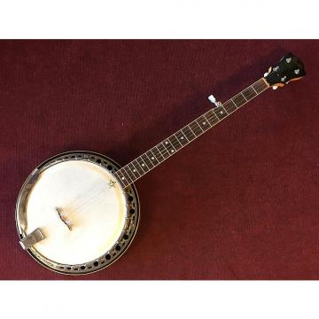 Custom Fender Allegro 5 String Banjo 1967-9 Sunburst