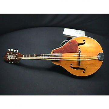 Custom Vintage U.S.A.Made Solid Wood Silvertone Archtop-Archback Mandolin in Ready to Play Condition