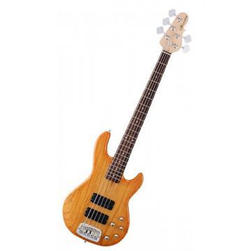 Custom G&L Tribute M2500 5-String Bass (Honeyburst)