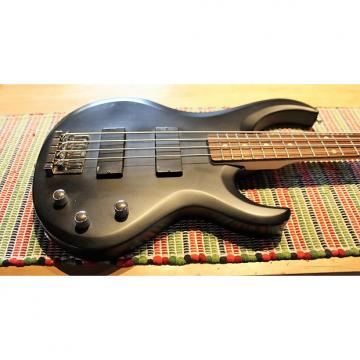 Custom Ibanez / G&L Bass Guitar BTB200 / M-2000