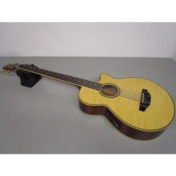 Custom JB Player JBEAB 4000-NA Electric Acoustic Bass Guitar