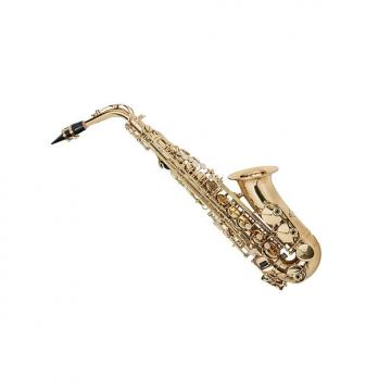 Custom Eb Alto Saxophone Gold Lacquer Finish, Pad Saver, Neck Strap, Hard Case (609436)