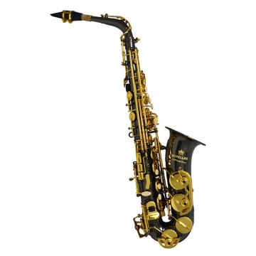 Custom Schiller American Heritage 400 Alto Saxophone - Electro-Black and Gold