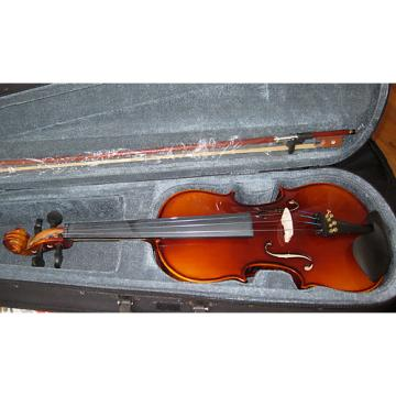 Custom 4/4 Fullsize Student Violin Outfit
