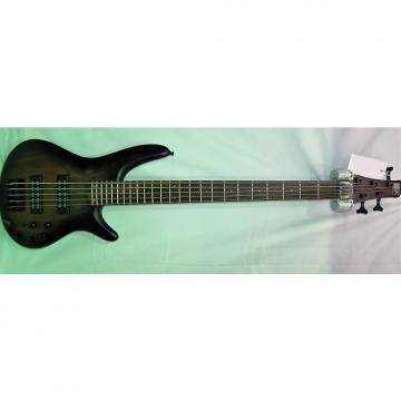 Custom Ibanez SR405EBCWNGF Electric Bass 2015 Natural Grey Flat