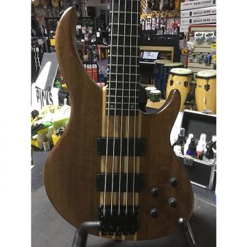 Custom Peavey Grind 5 String Bass