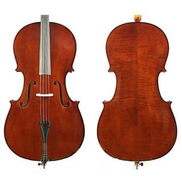 Custom Enrico Student II 4/4 Size Cello Outfit