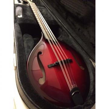 Custom Breedlove Mandolin Quartz CUSTOM OF Rare Custom Color One Of A Kind
