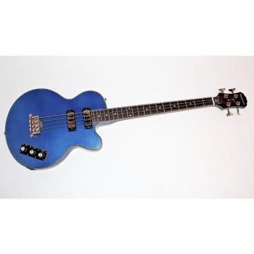 Custom Epiphone Allen Woody Rumblekat Blue 4 String Electric Bass Guitar