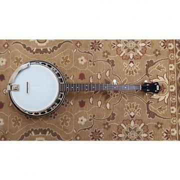 Custom Recording King RK-R15-BR Madison Rambler Resonator Banjo with Professional Setup!