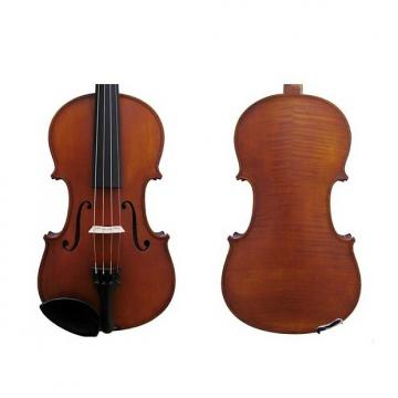 Custom 1/2 SIZE VIOLIN OUTFIT ANTIQUE FINISH W/VIOLINO / GLIGA II (GLIGA)