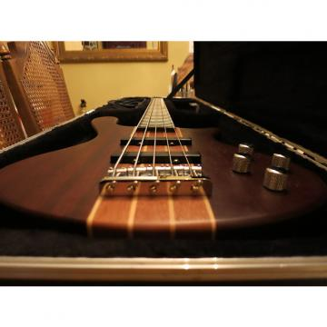 Custom Washburn T25 NMK Taurus 5 String Neck-Thru Bass w/ HSC!