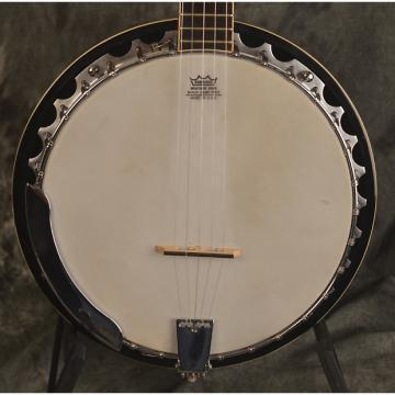 Custom Johnson JB 110 Banjo