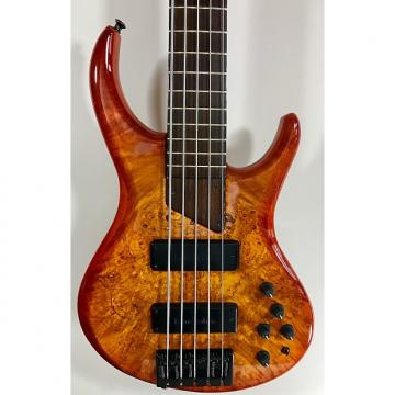 Custom MTD Eclipse 5-String Bass - Maple Burl top, Wenge neck/fingerboard, gig bag