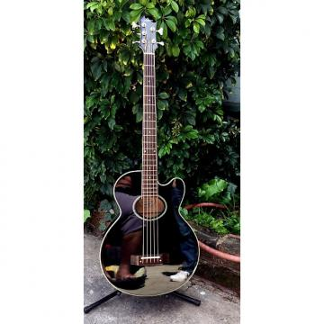 Custom Epiphone El Capitan 1990's Black with case