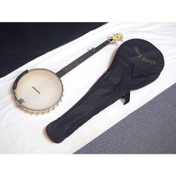 """Custom GOLD TONE CC-Carlin 5-string open-back Clawhammer BANJO w/ BAG - 12"""" head - B"""