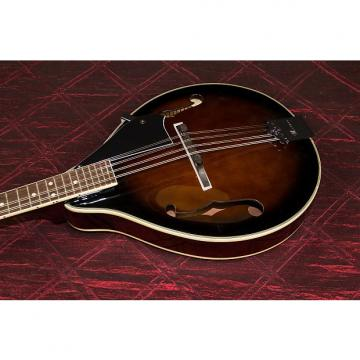 Custom Ibanez M510 A-Style Mandolin  Dark Violin Sunburst