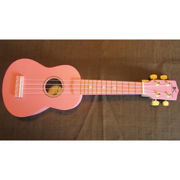 Custom Kaka'ako Beginner Ukulele - Pink Matte - Basswood Ukulele - Hawaii