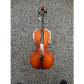 Custom Carlo Robelli 205 1/4 Cello