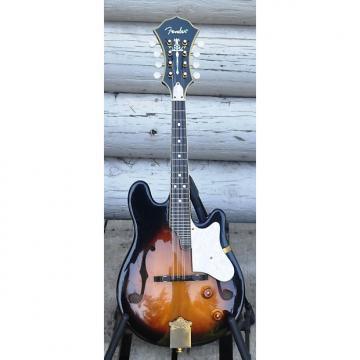 Custom Fender FM62SCE acoustic/electric mandolin